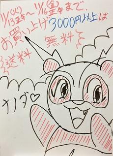 本日13日(火)正午から72時間限定で、お買い上げ「3000円以上」が送料無料!!